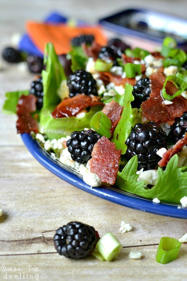 Blackberry Bacon Blue Cheese Salad   Delicious Salads That Don't Suck