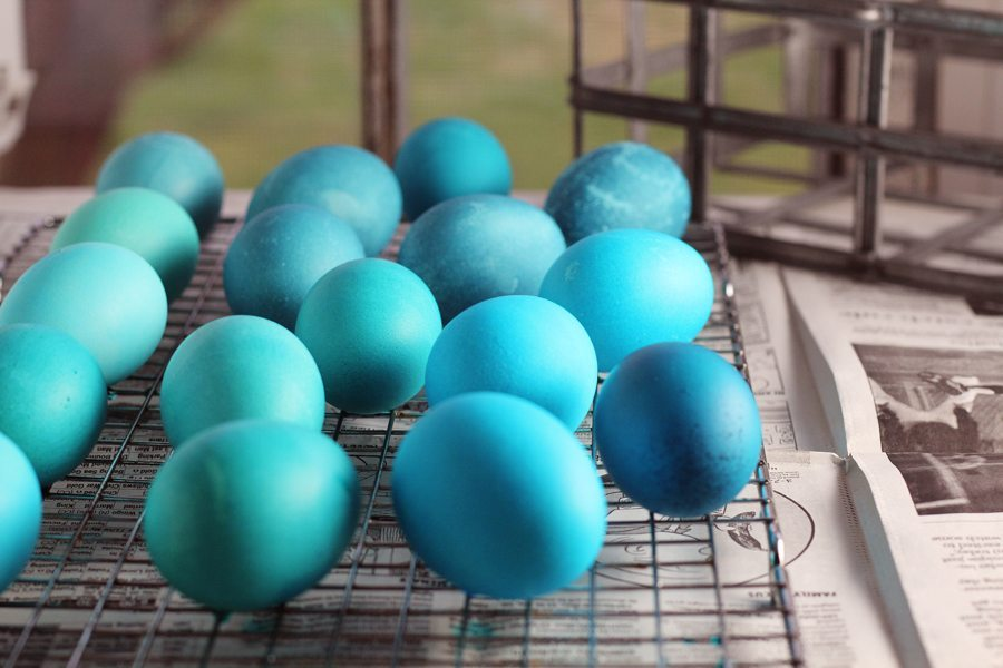 Various shades of blue dyed Easter eggs drying on a wire rack