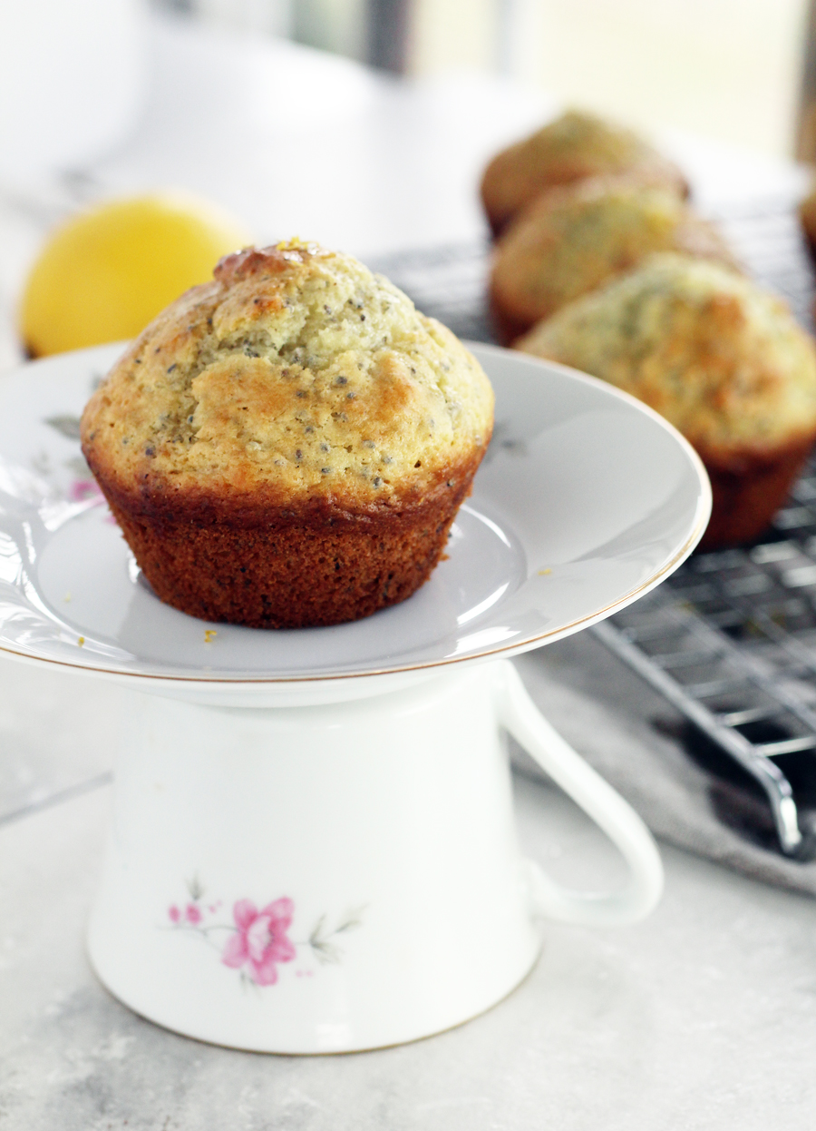 Lemon chia seed muffin on a small white plate