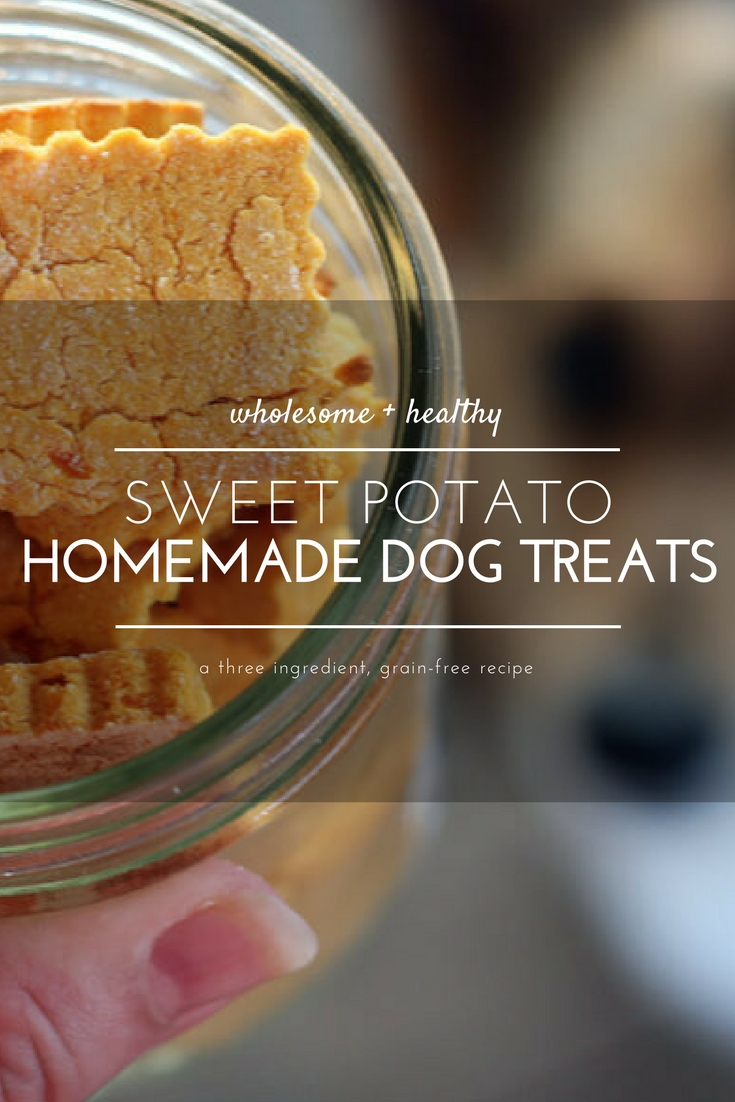 Sometimes, I feed my dog better than I feed myself. Case in point, these nutritious and healthy Sweet Potato Homemade Dog Treats.   Made with only 3 ingredients, your dogs are going to love you even more. #homemadedogtreats #sweetpotatodogtreats