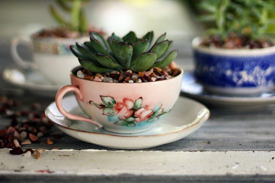 Tea Cup Succulent Planters