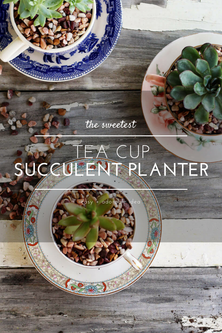 Would you love to have plants but don't want a lot of work? If so these Tea Cup Succulent Planters are perfect. This project is easy and affordable. (And so stinkin' cute, right?) Great for offices, dorms, bedrooms, and kitchen windows, I dare you to make just one. #succulentplanters #teacupcraft