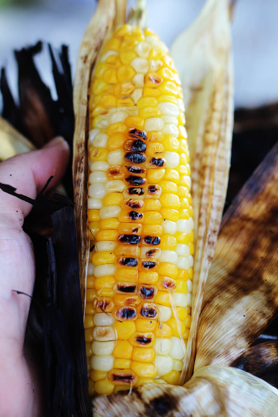 burnt corn latin singles Burnt corn, al 36401 real estate overview research home values, real estate market trends, schools, community info, neighborhoods, and homes for sale on truliacom.